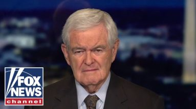 Gingrich accuses Biden administration of 'rejecting' reality